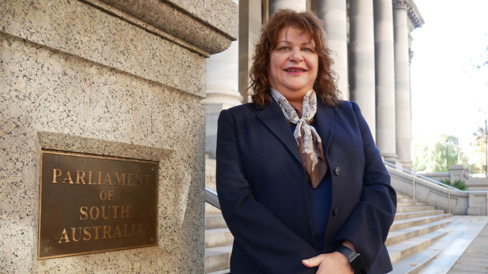 """""""Voices are heard but they are not listened to,"""" SA Labor politician, Irene Pnevmatikos, says"""